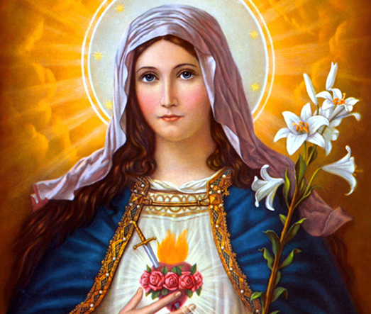 23.1 heart of mary